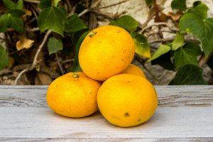 Mandarina de la península
