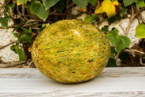 Melon piel de sapo de La Aldea
