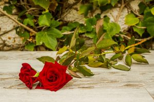 Rosas de Telde
