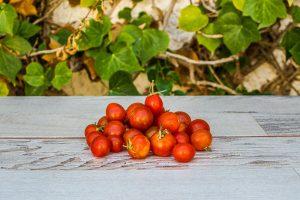 Tomate cherry de Telde