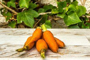 Zanahoria de Telde